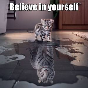 believe-in-yourself-kitten-seeing-a-tiger-in-a-puddle-1447120618